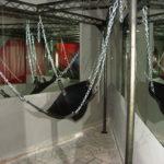 Des espaces sadomasochistes dans la prison de Meaux ?