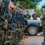 Confinement : le Beaujolais nouveau sera livré à domicile par l'Armée de terre